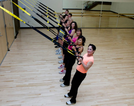 TRX Low Rows